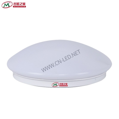 Ceiling induction emergency light 18 / 24W